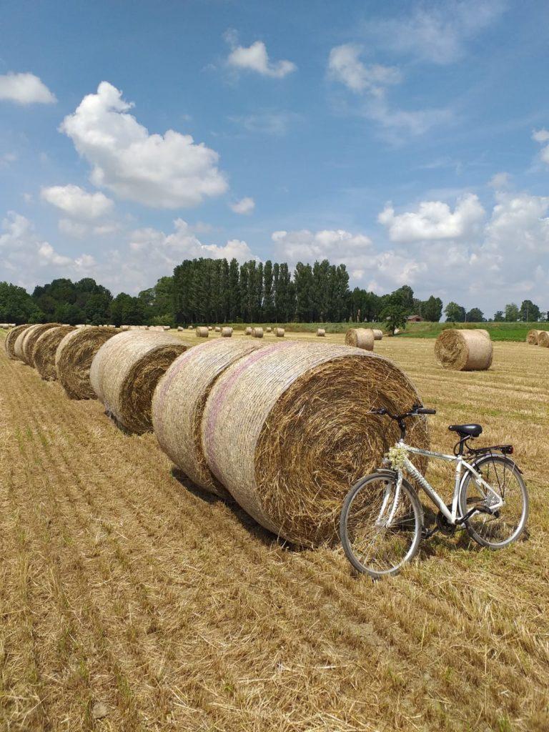 bicicletta appoggiata a balle di fieno su campo