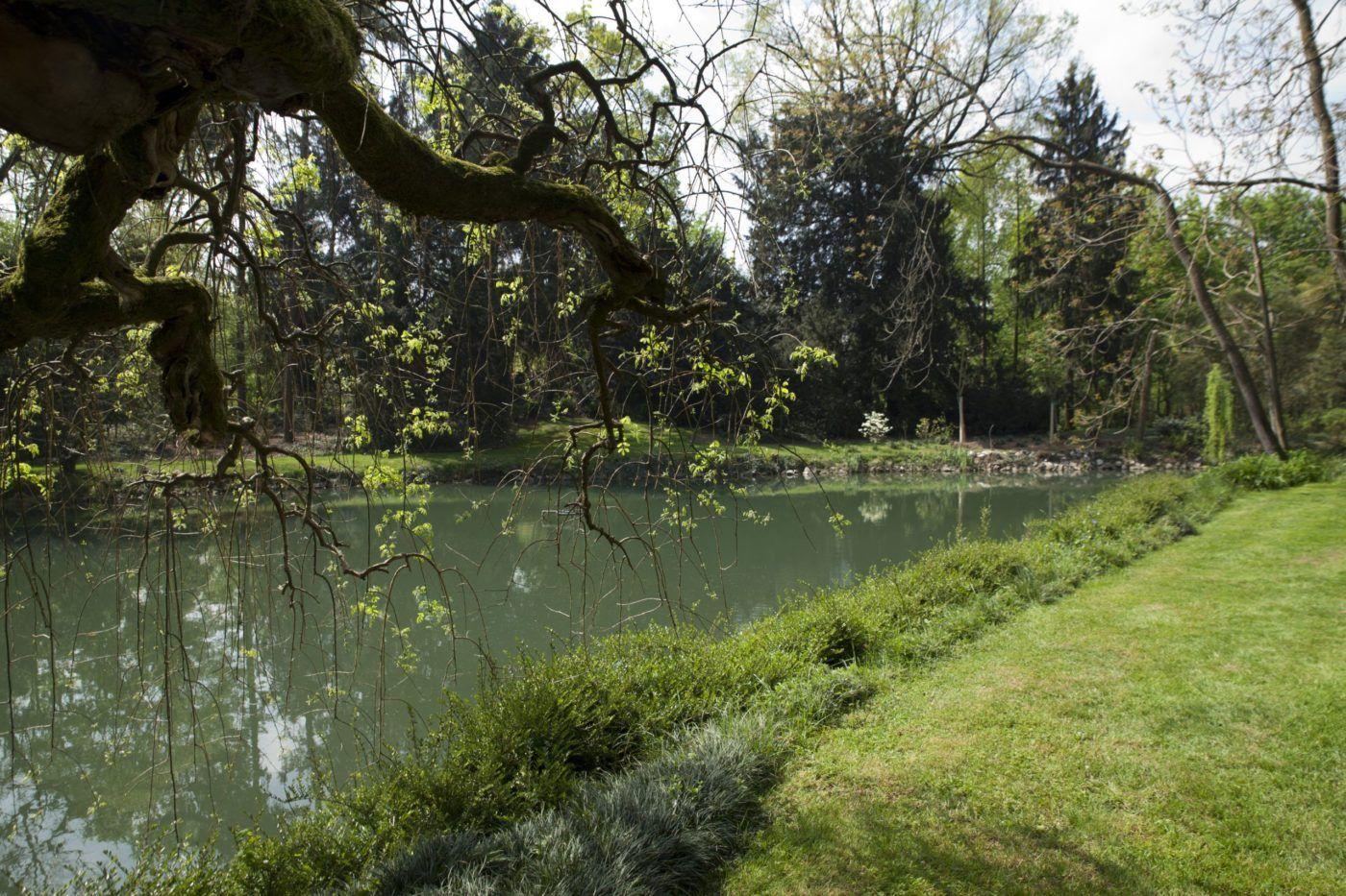 scorcio del parco con laghetto drago tarantasio