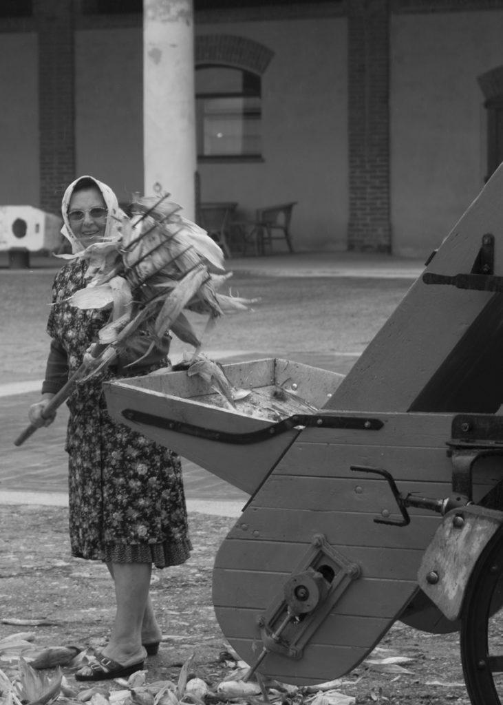 donna contadina al lavoro in una cascina cremonese