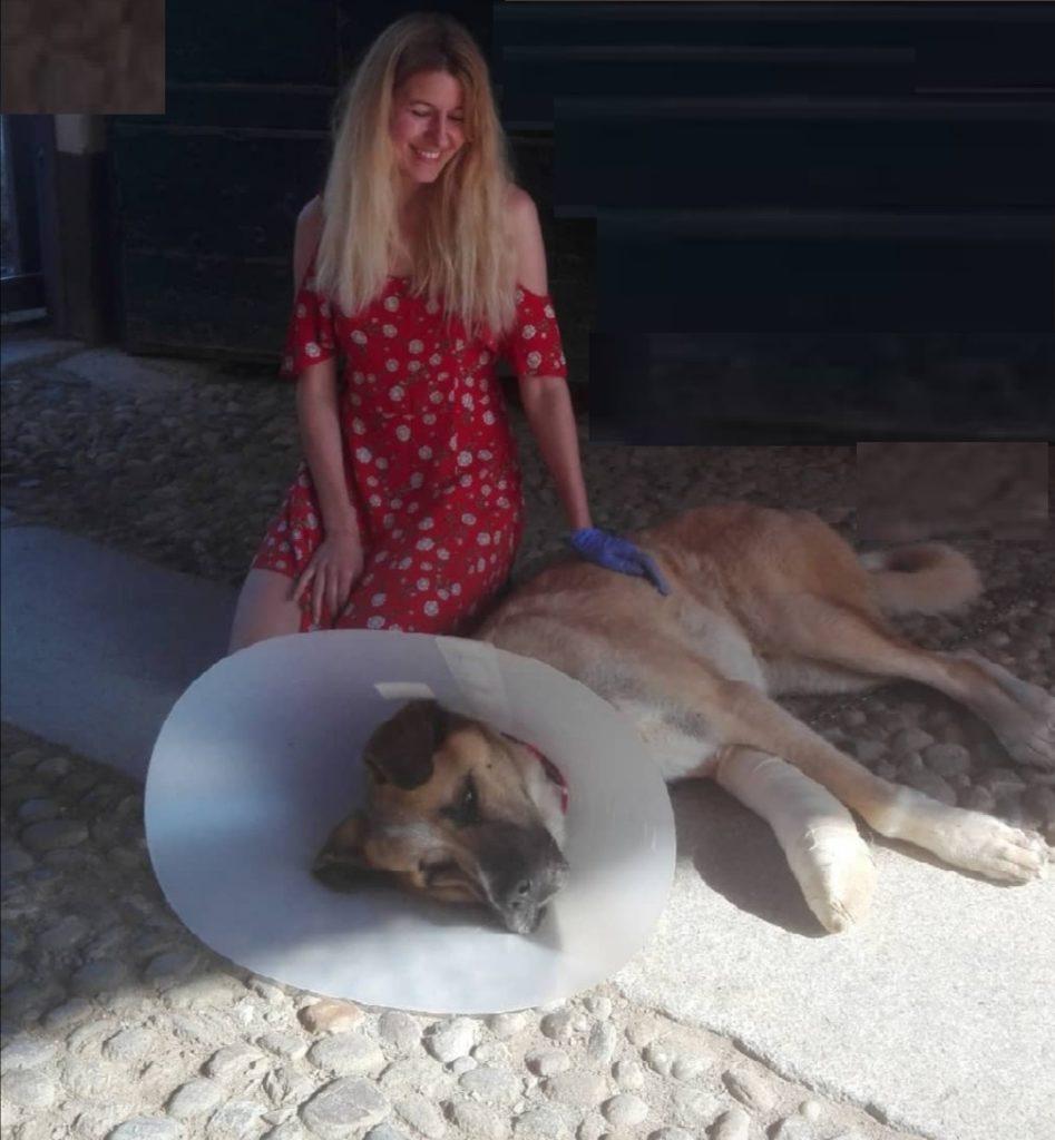 Naz e Sari amore a quattro zampe agriturismo cane pet friendly